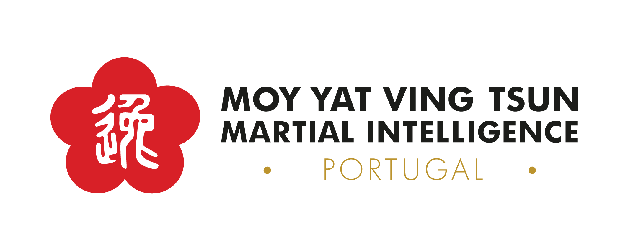 myvt-portugal